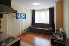 lisova-pisnia-2-room-apartment214352457292